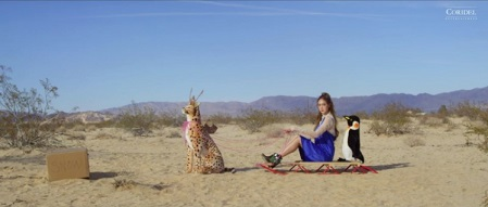 Jessica FLY sled.jpg